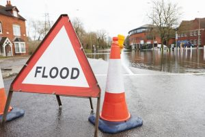 With the right type of flood and catastrophe insurance, businesses can mitigate their exposure to risks caused by natural disasters.